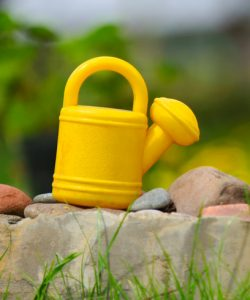 Kids' Watering Can in the Garden